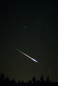 A Leonid meteor, or a shooting star seen in the 2009 Leonid Meteor Shower.