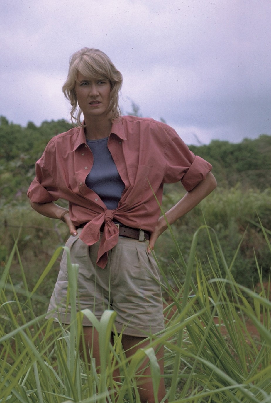 Ellie Sattler in Jurassic Park #movies #film #adventure