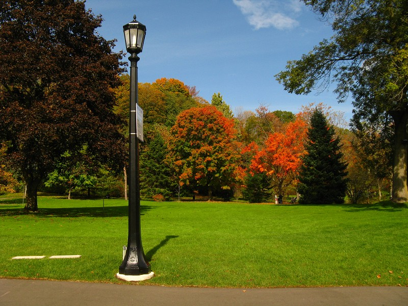 Scenic fall photo