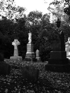 My town's cemetery at twilight
