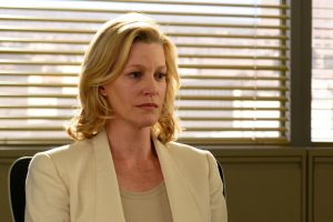 Anna Gunn as Skyler White