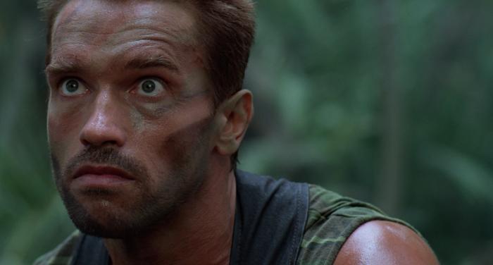 Arnold Schwarzenegger as Dutch