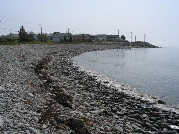 Rock beach somewhere in Nova Scotia