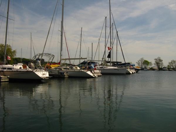 The marina where my wife and I took our walk.