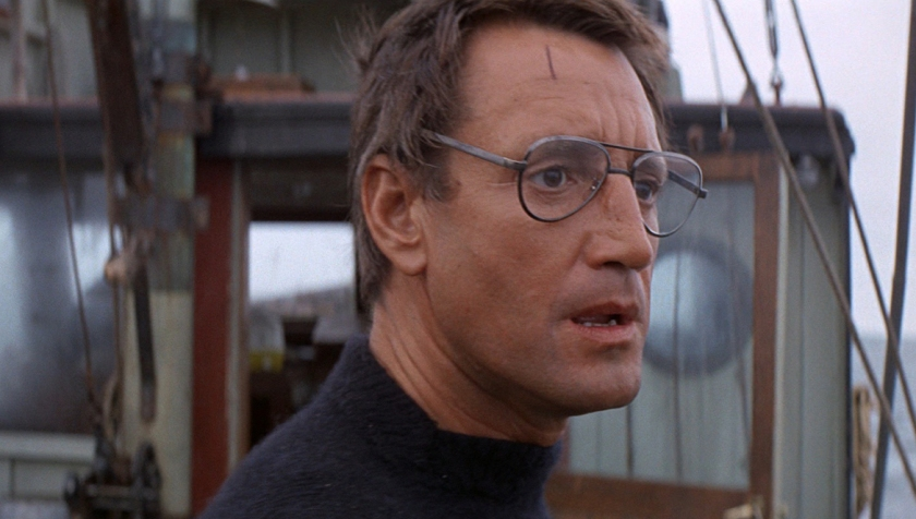 Roy Scheider as Chief Martin Brody
