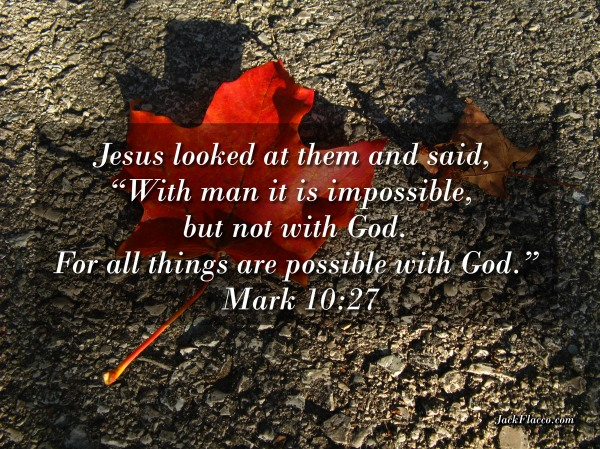 "Jesus looked at them and said, ""With man it is impossible, but not with God. For all things are possible with God."" (Mark 10:27 ESV)"